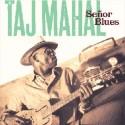 Taj Mahal Señor Blues