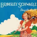 Brinsley Schwarz Despite It All