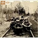 The Animals Animal Tracks