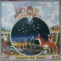 Waterfall Beneath The Stars