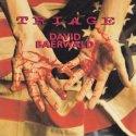 David Baerwald Triage