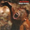 Babybird Bugged