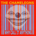 The Chameleons Why Call It Anything