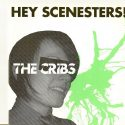 The Cribs Hey Scenesters!