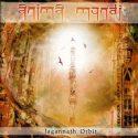 Anima Mundi Jagannath Orbit