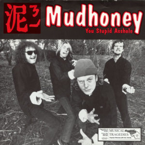 Mudhoney You Stupid Asshole