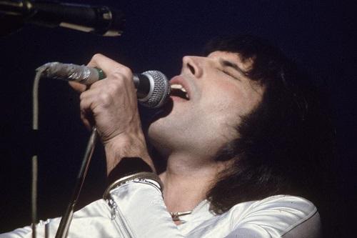 Freddie Mercury photo 2