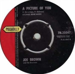 Joe Brown A Picture Of You single