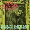 The Wonder Stuff Don't Let Me Down Gently