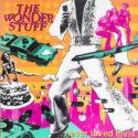 The Wonder Stuff Never Loved Elvis
