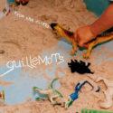 Guillemots From The Cliffs