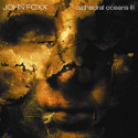 John Foxx Cathedral Oceans III