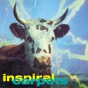 Inspiral Carpets She Comes In The Fall